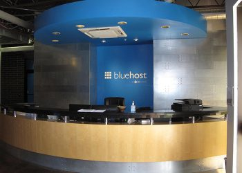 Bluehost integrates WordPress themes and plugins