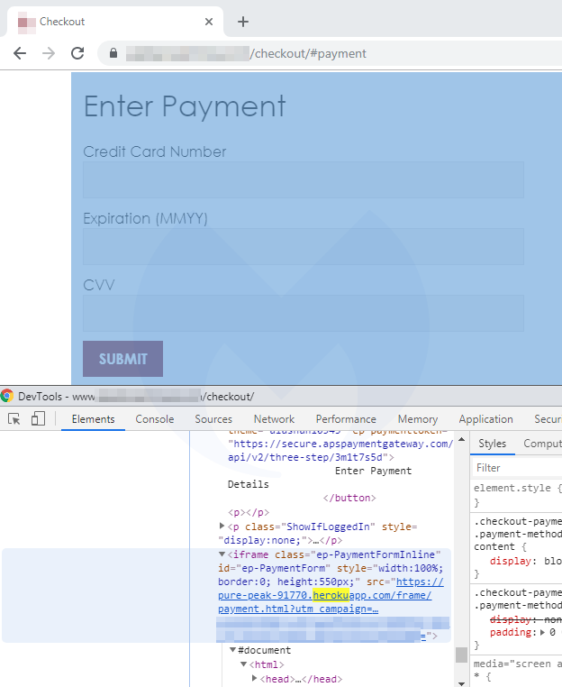 fake payment form