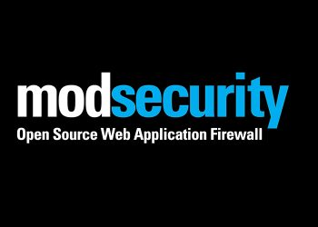 DoS vulnerability found in ModSecurity