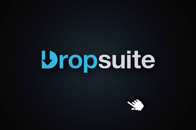 Dropsuite is now available on Plesk
