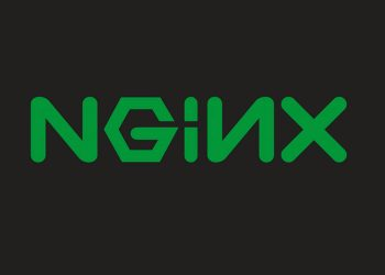 NGINX Unit introduces reverse proxying and address-based routing