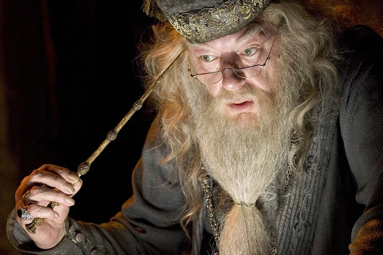 """Warner Bros. tries to acquire """"Dumbledore"""" domain name"""