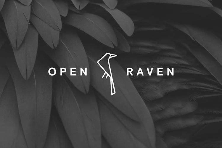 Open Raven raises $15M in series A funding round