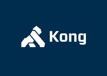Kong to raise $100 million to accelerate cloud connectivity