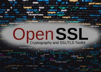OpenSSL patched 2 high-severity vulnerabilities