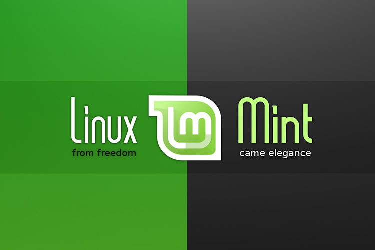 Linux Mint 20.2 released