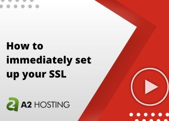 How to immediately set up your SSL
